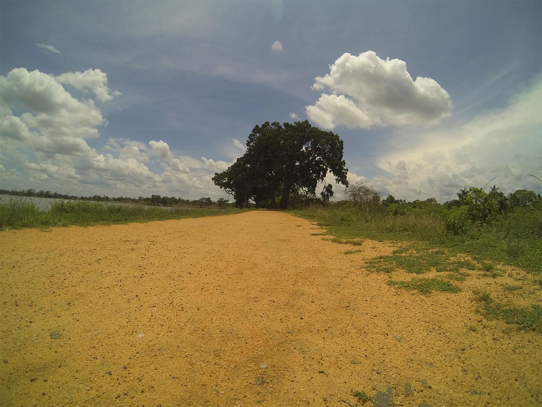 Srilanka tour_travelnative8