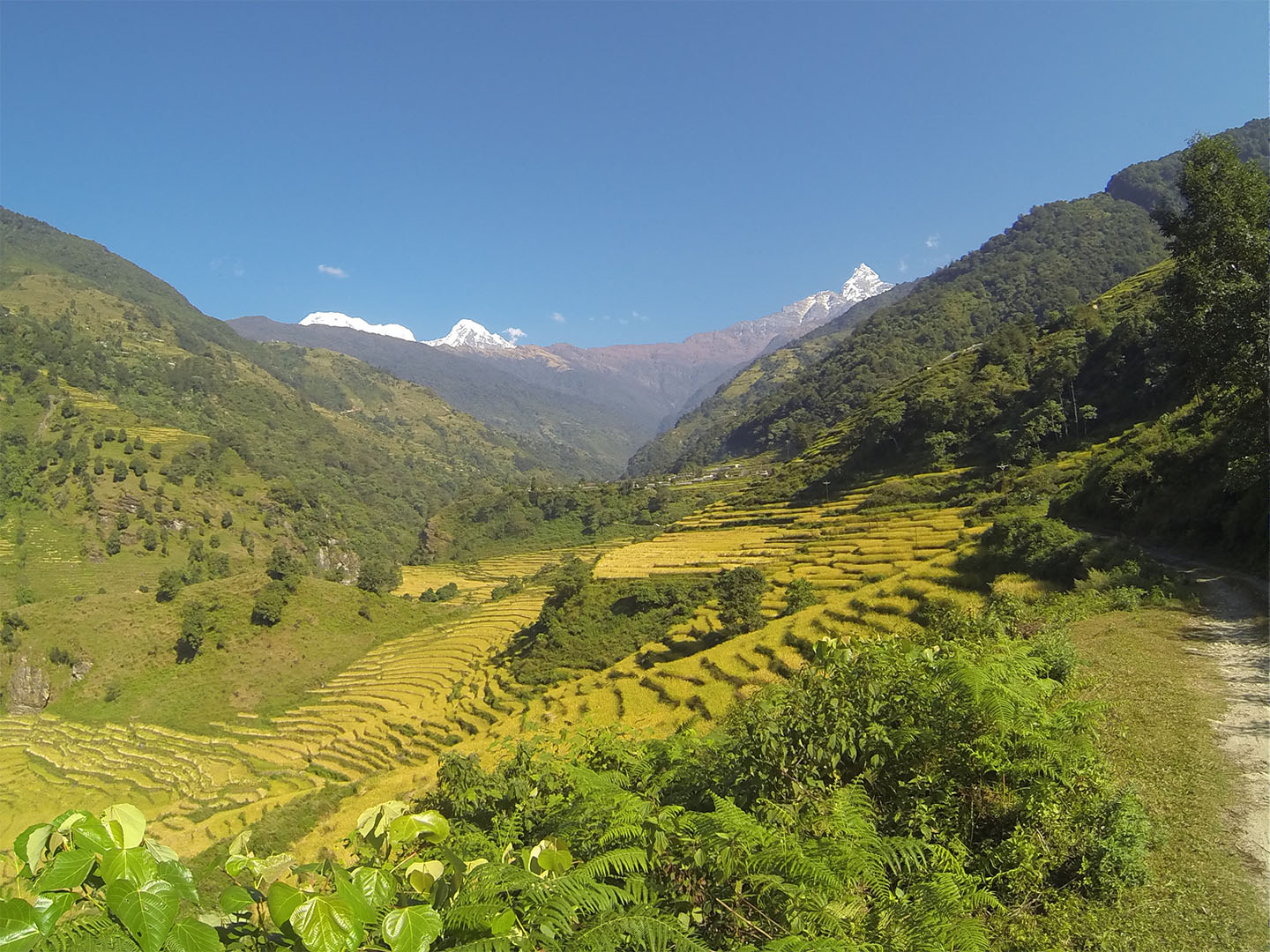 Nepal_cesta_travelnative