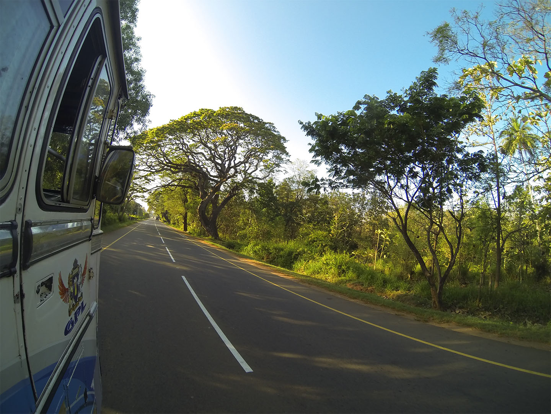 Srilanka tour_travelnative9