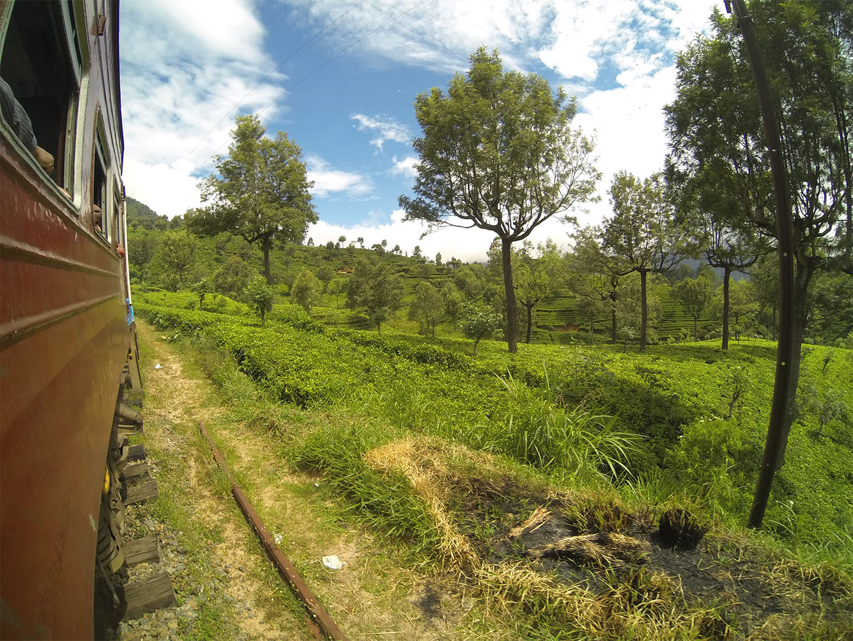 Sri_lanka_travelnative_cajova tour4